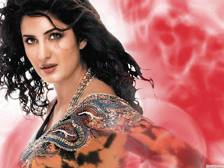 2012 New Priyanka Chopra Bollywood Hot model HQ wallpapers