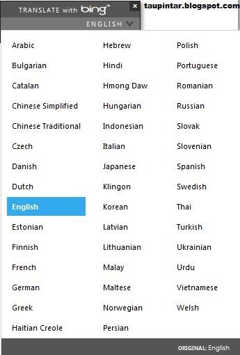 widget translate bing