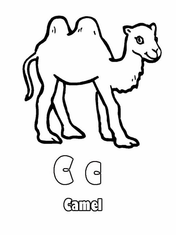 Printable Alphabet Coloring Pages Camel