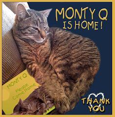 Monty's Back!