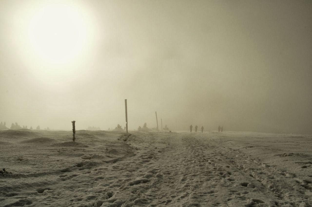 zagubieni we mgle