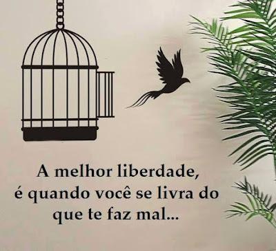 A melhor liberdade é quando...
