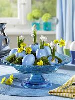 Декорация на празничната трапеза за Великден в синьо с нарциси и вазички от яйца