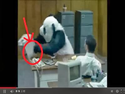 no le digas no al panda