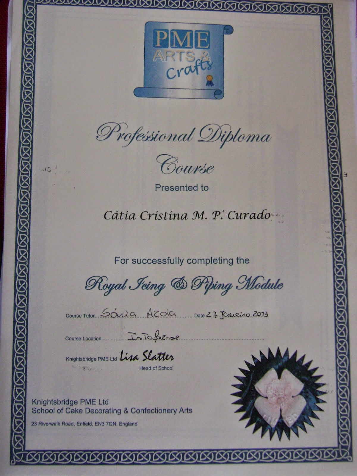 Diploma Profissional PME - Royal Icing and Piping Gel