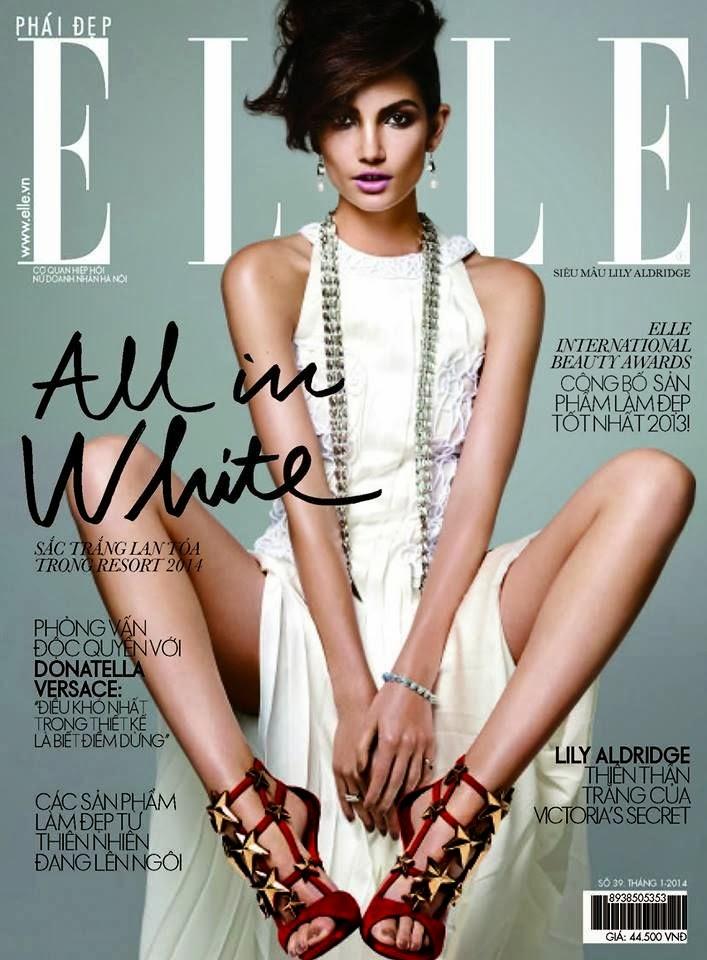 Magazine Cover : Lily Aldridge Magazine Photoshoot Pics on Elle Magazine Vietnam January 2014 Issue