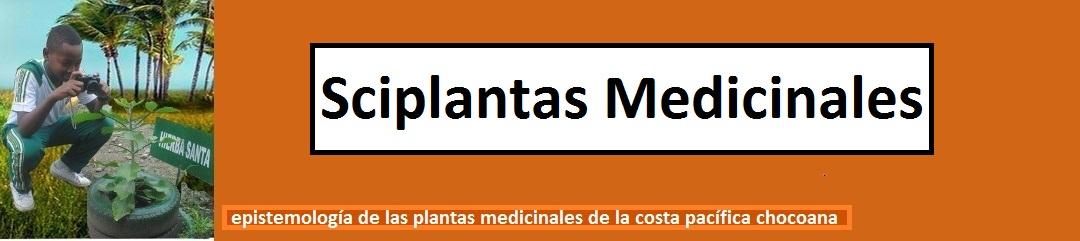 sciplantas Medicinales