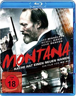 Montana 2014 Dual Audio [Hindi Eng] BRRip 720p 900mb