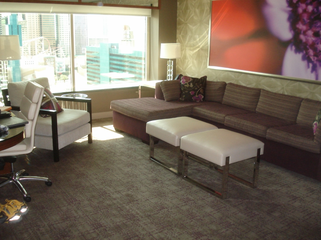 Wayne S World Mgm Tower Spa Suite