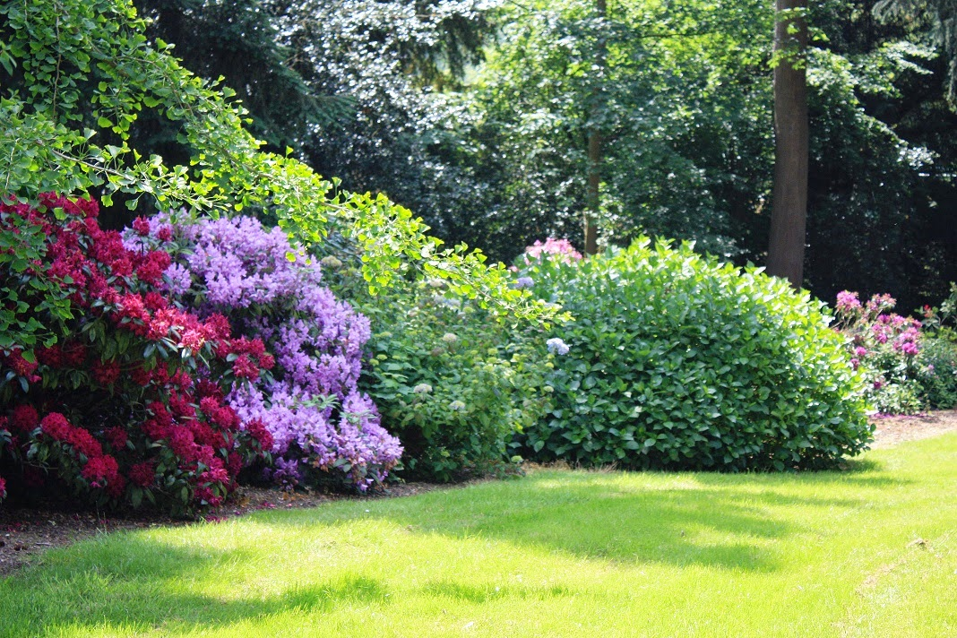 mon jardin dans l 39 aisne les beaux jardins puisieux et clanlieu. Black Bedroom Furniture Sets. Home Design Ideas
