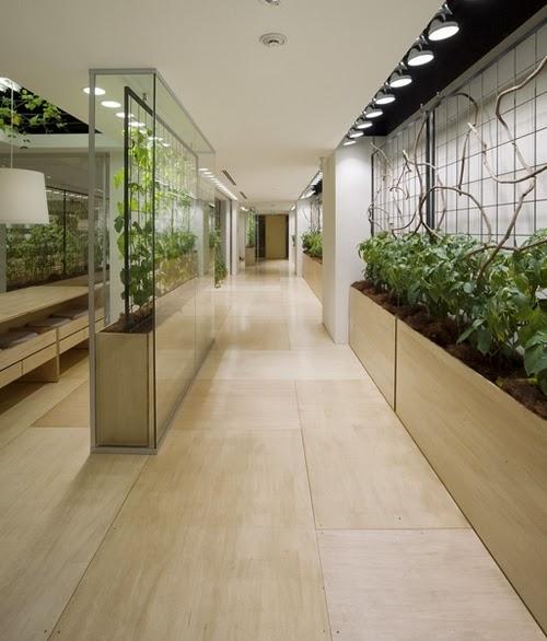 16-Urban-Farm-Building-Architects-Kono-Designs-Pasona-Group-www-designstack-co