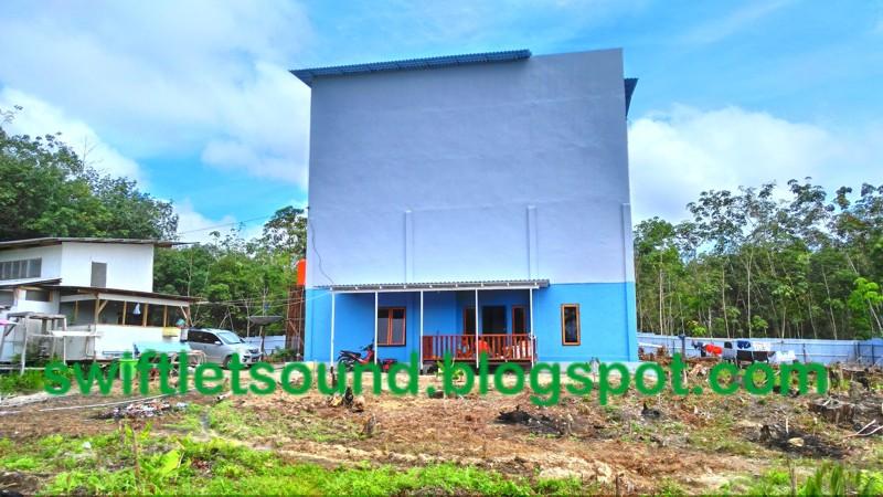 NEW BIRD HOUSE IN JUNGLE