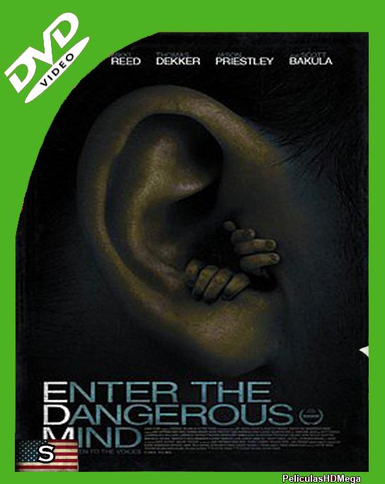 Enter The Dangerous Mind (2013) DVDRip Subtitulado