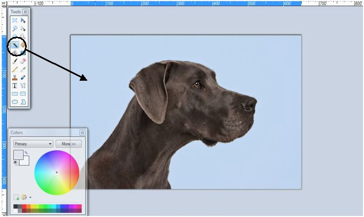 how to make certain parts of a picture transparent paint.net