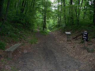 Switchback Railroad bed