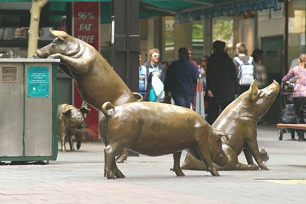 Cerdos Rundle Mall, Adelaide, Australia