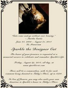 ONLINE MEMORIAL FOR SPARKLE THE DESIGNER CAT