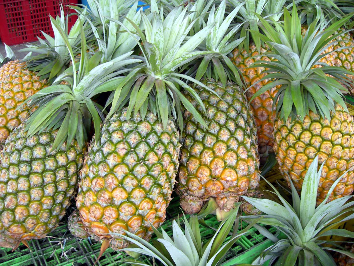 produce clerk the produce clerks handbook by rick chong how to handle pineapple