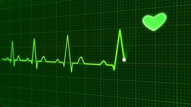 10 fatos curiosos sobre a pulsação
