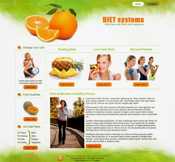 Diet Systems - Free Drupal Theme