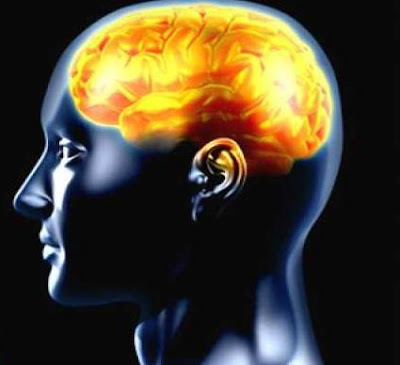 22 طريقة لتحسين أداء المخ  - العقل - اللاوعى - الضمير