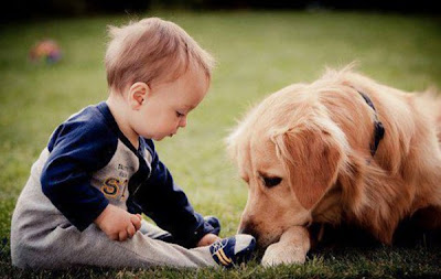 little baby boy kid with pet dog picture