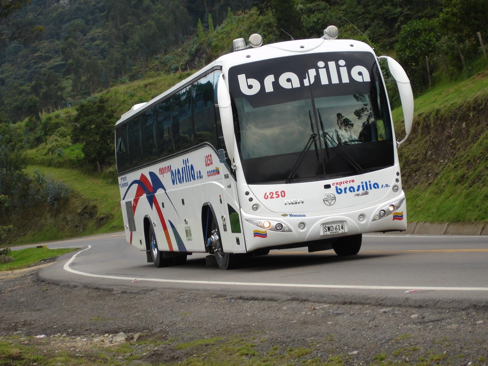 CASO DE EXPRESO BRASILIA: HISTORIA DE EXPRESO BRASILIA