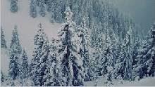 Sfondo invernale-10