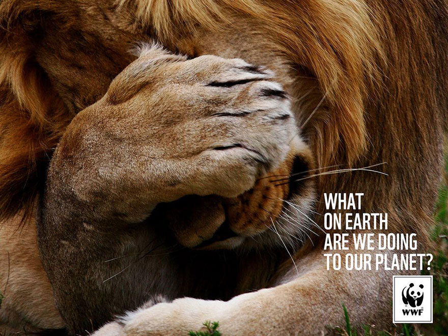 WWF: What On Earth Are We Doing To Our Planet?