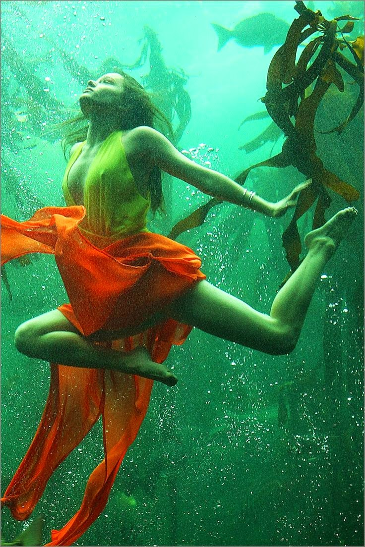Underwater photograph by Unknown | Ses Rêveries