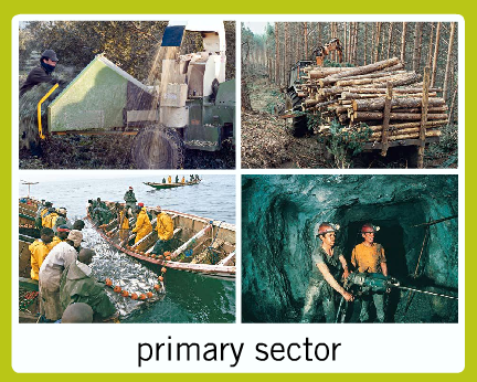 What Are Examples of Primary Industries?
