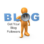 Get Your Blog Followers