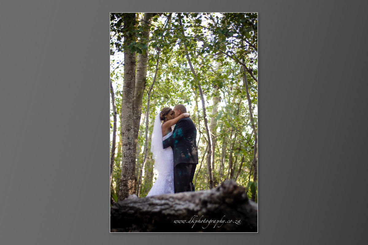 DK Photography DVD+slideshow-369 Cleo & Heinrich's Wedding in D'Aria, Durbanville  Cape Town Wedding photographer