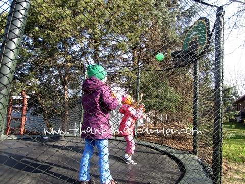 AlleyOop Sports ProFlex Basketball Set review