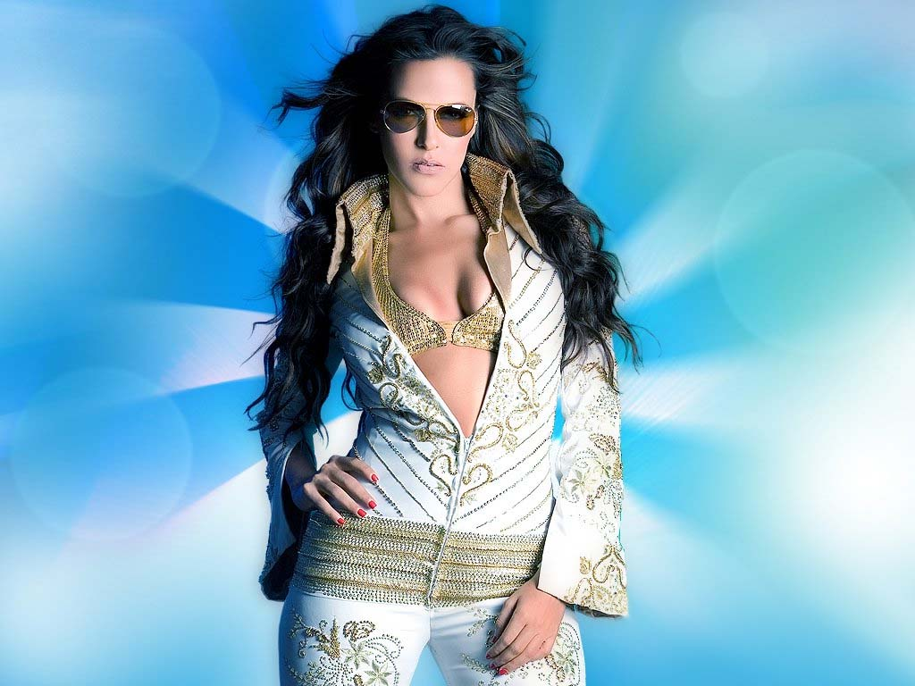 ... HD Wallpapers Hollywood Actress HD Wallpapers: Neha Dhupia HD