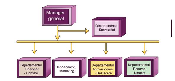 Model plan de afaceri pentru servicii software