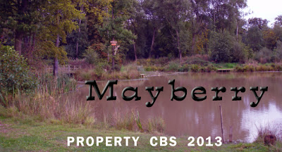 Mayberry, The Andy Griffith Show, remake, reboot, April Fools :-)