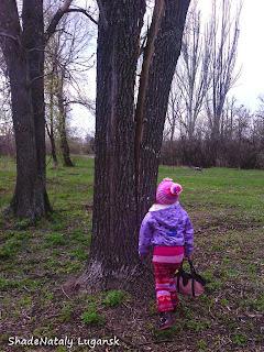 Раскол дерева