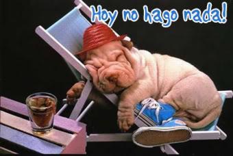 imágenes animadas graciosas en perritos