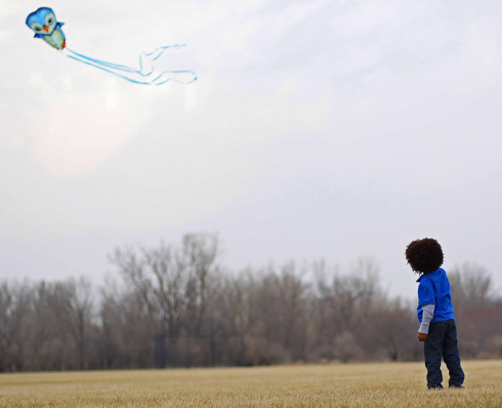 how to fly a kite with little wind