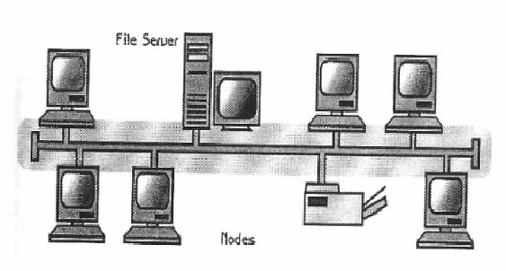 Karakteristik Topologi BUS dan Star dalam Komputer Jaringan