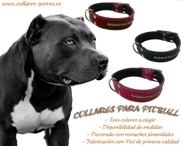 http//www.collares,perros.es/53,collares,y,correas,para,perros ,piel,piramide,tienda