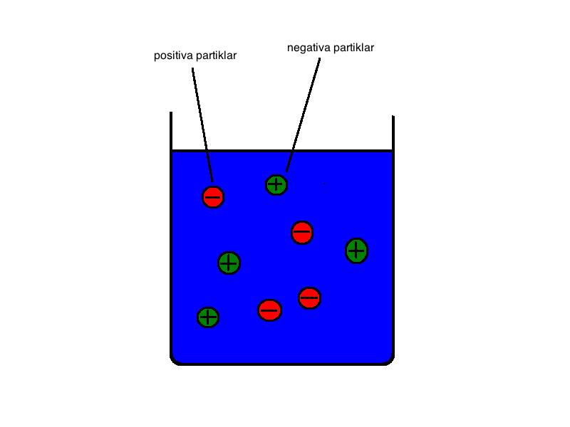 hur en cell fungerar