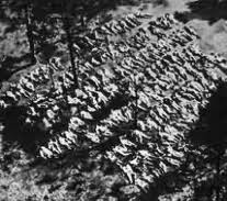 Katyn Massaacre WW2 -aerial photo of mass graves -   Polish officers executed by Soviet NKVD