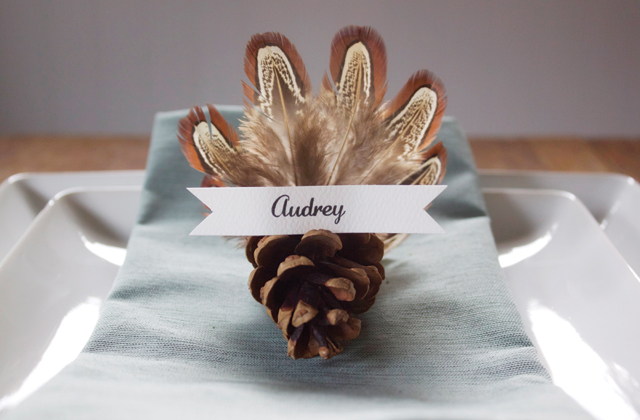 turkey pinecone1 Fun, easy turkey crafts for kids to make