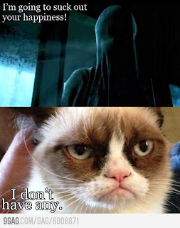 Grumpy Cat - Harry Potter