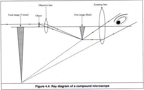 Zoology notes instrumentation microscopy fybsc ccuart Images