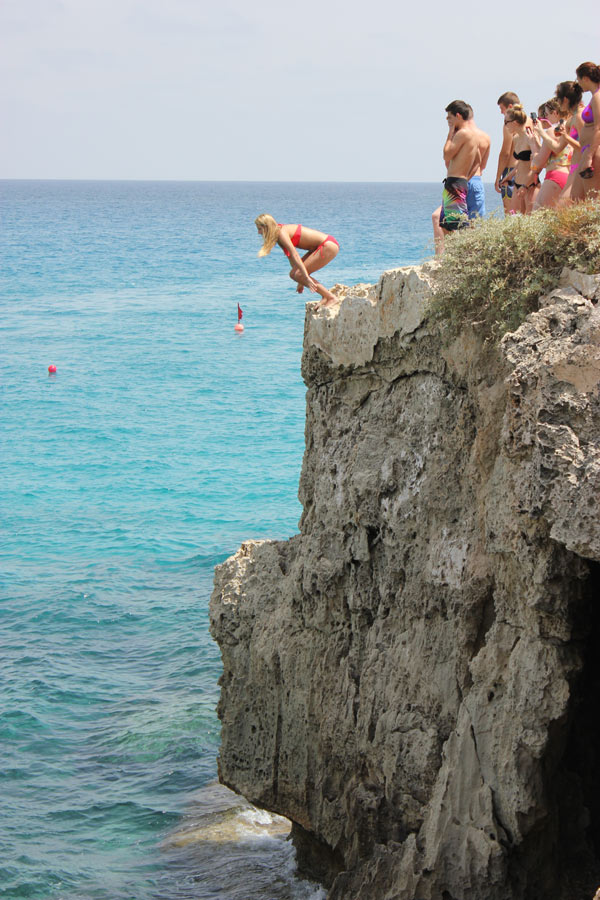 ving cypern pavlinia