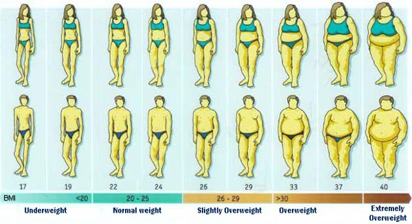 If you are now wondering what your own BMI is after looking at this chart, ...