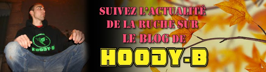 Le blog Hoody Bee